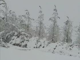强冷空气入侵新疆阿合奇县遭遇暴雪袭击