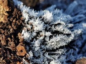 江苏周末最高气温跌回个位数 部分地区有冰冻